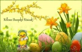 Kellemes Ünnepeket Kívánok!
