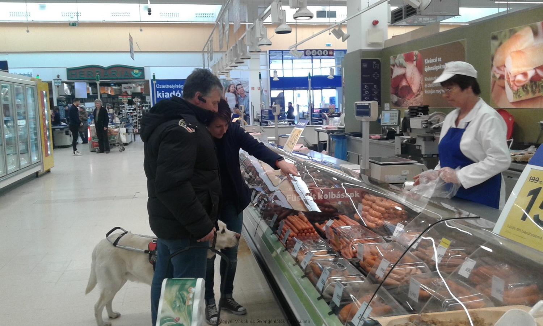 Berci könnyen bejutott a boltba. Itt mindenki tudta, hogy a vakvezető kutyának szabad bejárása van mindenhova. Berci sóvárgó szemmel, de türelmesen áll a felvágottas pult előtt.