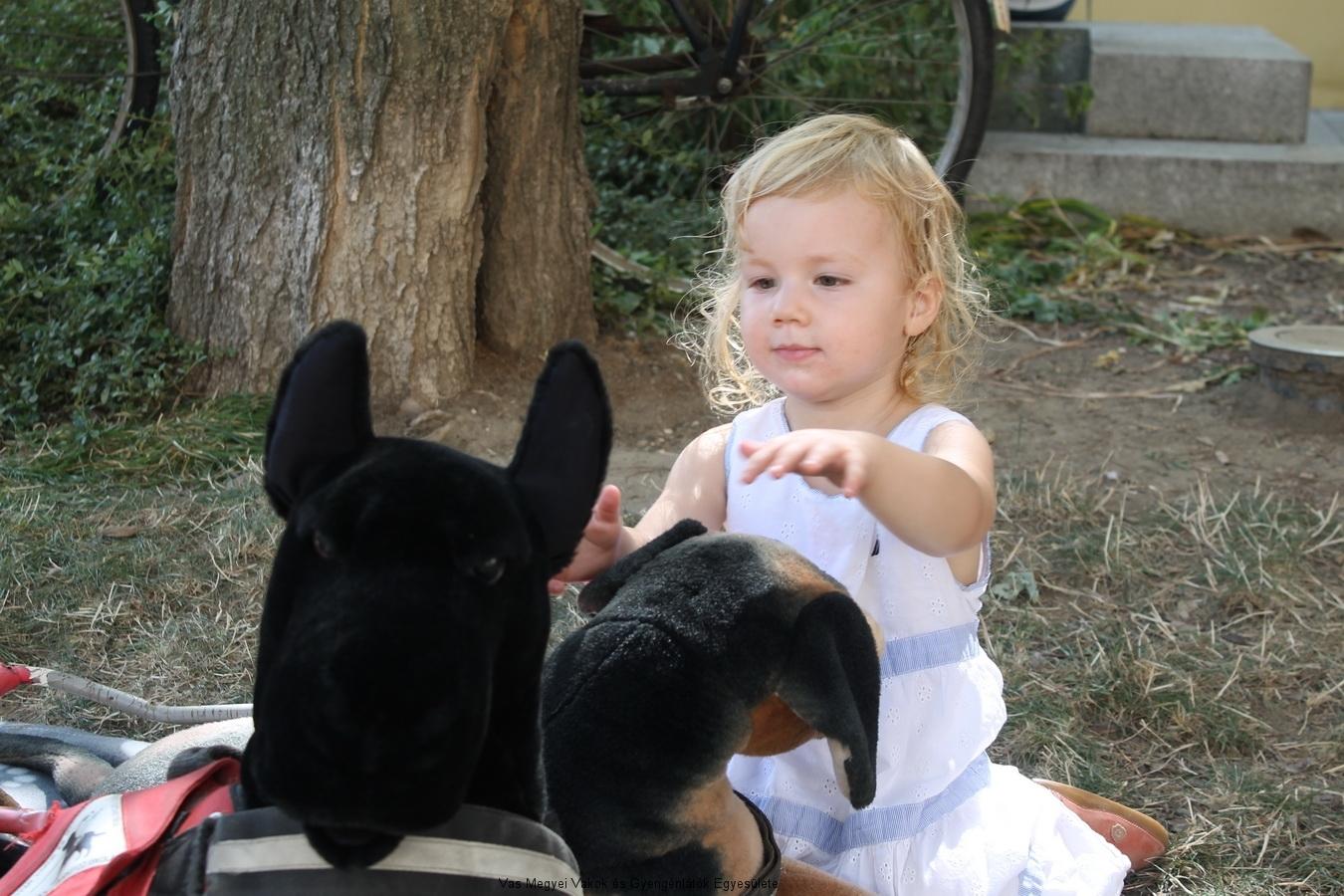 Volt, aki a plüss kutyákkal barátkozott.