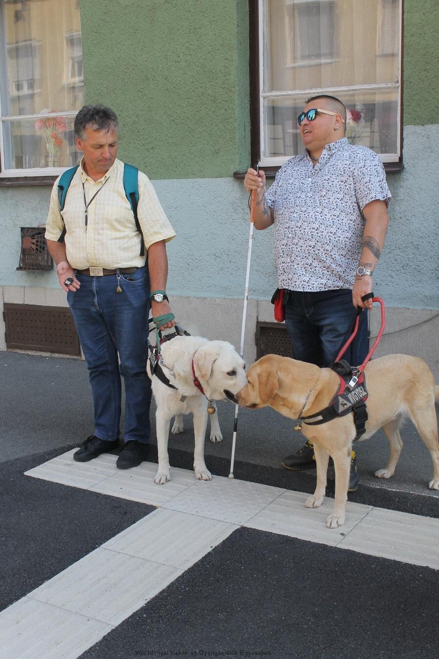 Bősze György és Varga Olivér kutyáikkal a távkapcsolót próbálják.